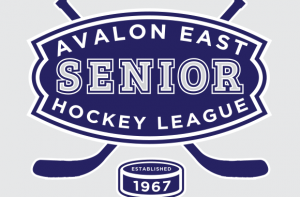 Avalon East Senior Hockey League | AESHL