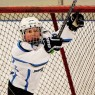 Minor Hockey Player
