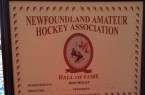 Ron Healey - Newfoundland Hockey Official